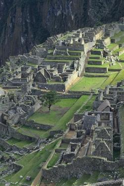 Machu Picchu Ancient Ruins, Peru by Sybil Sassoon