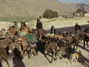 Migration of the Qashgai Tribe, Iran, Middle East by Sybil Sassoon