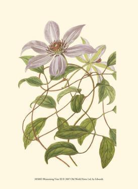Blossoming Vine III by Sydenham Teast Edwards