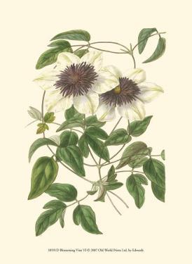 Blossoming Vine VI by Sydenham Teast Edwards