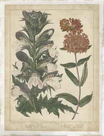 Enchanted Garden IV by Sydenham Teast Edwards