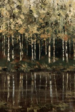 Birch Trees by Sydney Edmunds