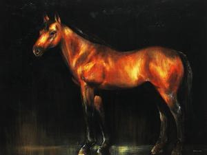 Dark Night by Sydney Edmunds