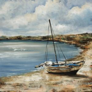 Forgotten Coast by Sydney Edmunds