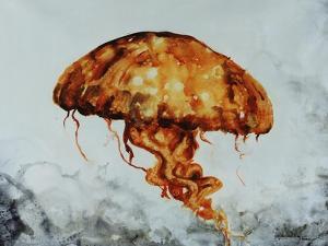 Jelly fish by Sydney Edmunds