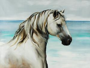 Oceans Spirit by Sydney Edmunds