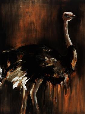 Ostrich by Sydney Edmunds