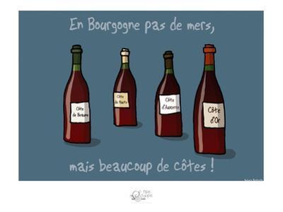 Tipe taupe - En Bourgogne, pas de mers by Sylvain Bichicchi