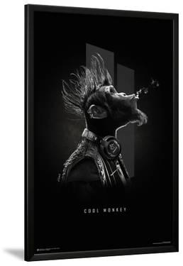 Cool Monkey by Sylvain Binet