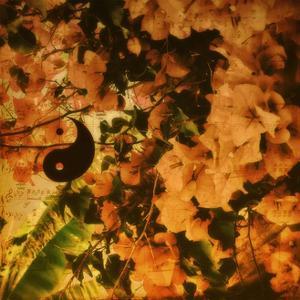 Yin within yang, 2012, by Sylver Bernat