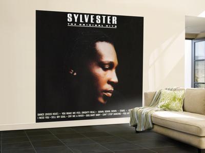 Sylvester, The Original Hits