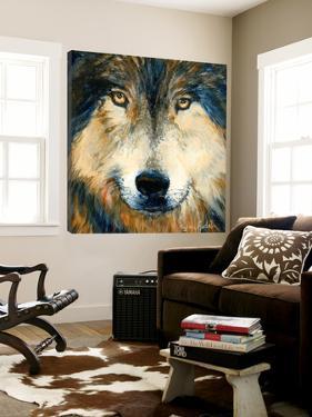 Regard inquiet du loup by Sylvia Audet