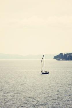 Hazy Sea by Sylvia Coomes