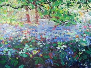 Carpet of Bluebells by Sylvia Paul
