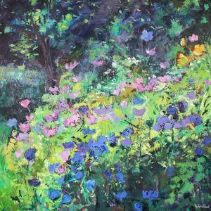 Play of Light by Sylvia Paul