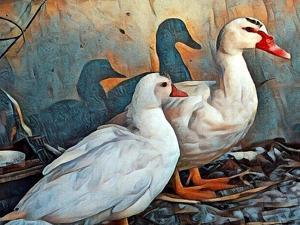Fred & Lucy Duck Family by sylvia pimental