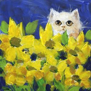 Gold Eye White Persian in Yellow Flowers by sylvia pimental