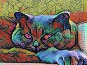 Pretty Cat by sylvia pimental