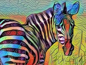 Pretty Colorful Zebra by sylvia pimental