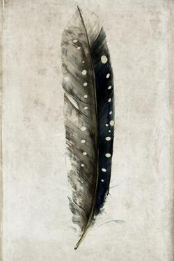 Feather 2 by Symposium Design