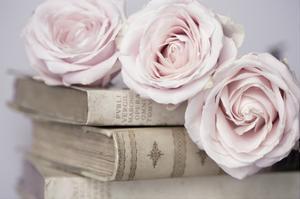 Vintage Roses by Symposium Design