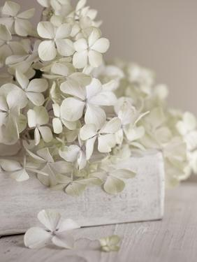 White Flowers by Symposium Design