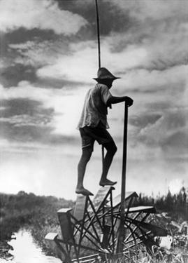 Japanischer Reisbauer auf einer Wassertretmühle, 1934 by SZ Photo