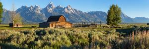 T. A. Moulton Barn in field, Mormon Row, Grand Teton National Park, Wyoming, USA