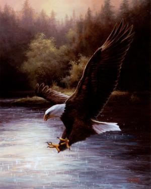 Eagle Prey by T^ C^ Chiu