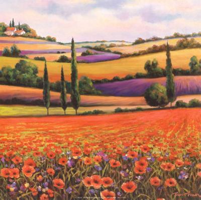 Fields of Poppies I by T. C. Chiu