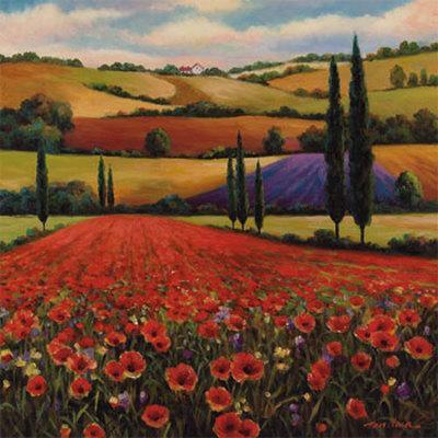 Fields of Poppies II