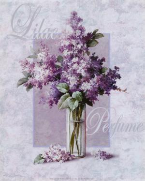 Lilac by T. C. Chiu