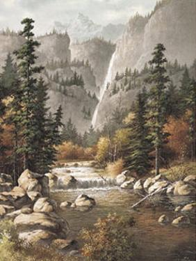 Mountain Stream by T. C. Chiu