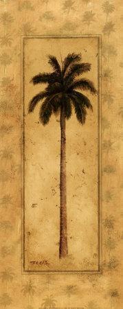 Regal Palm