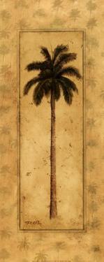Regal Palm by T. C. Chiu