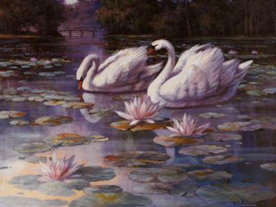 Swans and Bridge by T. C. Chiu