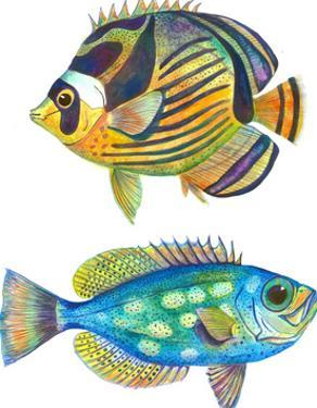 2 Fish by T.J. Heiser