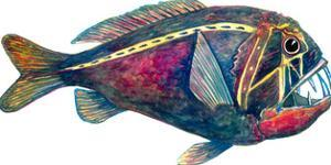 Meany Fish by T.J. Heiser