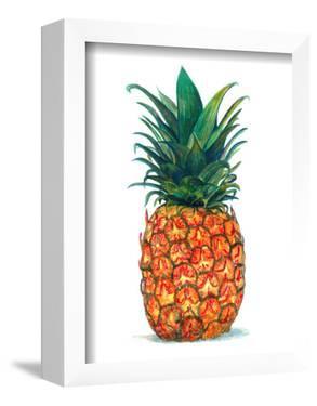 Pineapple by T.J. Heiser