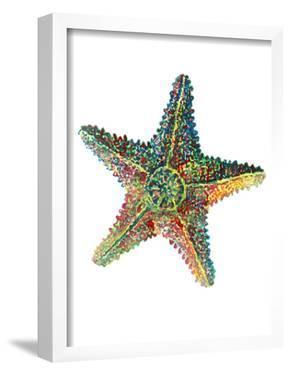 Sea Star by T.J. Heiser
