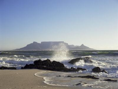 Table Mountain, Cape, South Africa, Africa by I Vanderharst