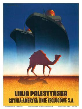 The Palestinian Line by Tadeusz Trepkowski