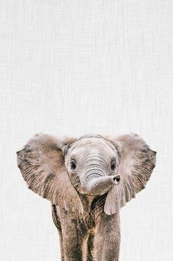 Baby Elephant by Tai Prints