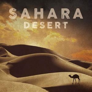 Vintage Sahara Desert with Sand Dunes and Camel, Africa by Take Me Away