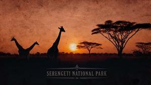 Vintage Sunset with Giraffes in Serengeti National Park, Africa by Take Me Away