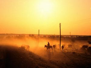 Sun Sets for the Cowboy by taken by Richard Radford