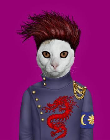 B Cat (Pets Rock) by Takkoda