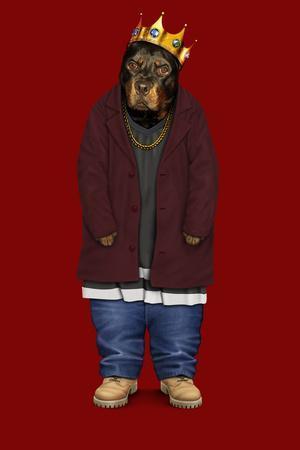 Big Doggie (Pets Rock)