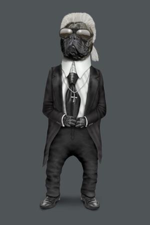Fashion (Pets Rock) by Takkoda