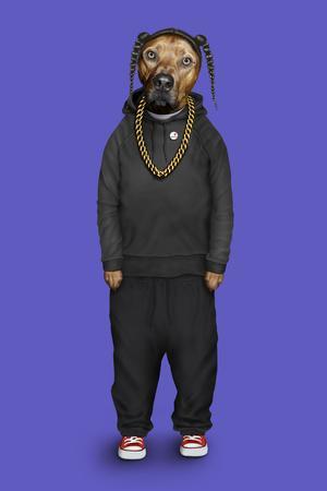 Rap (Pets Rock)